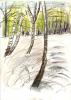 droog I Mariapeel 21x29,7 cm geslect   Ftollenaar geselectweb I